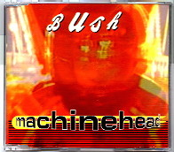 MachineheadBush